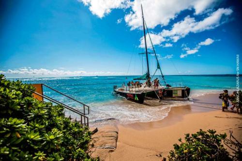 SN Hawaii 20162017941